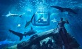 The Shark Aquarium v Paříži od Airbnb