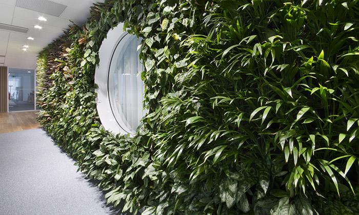 Němec přináší kaskádové zahrady dointeriéru domů