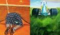 Ukázka z výstavy Sportu zdar! v centru současného umění DOX