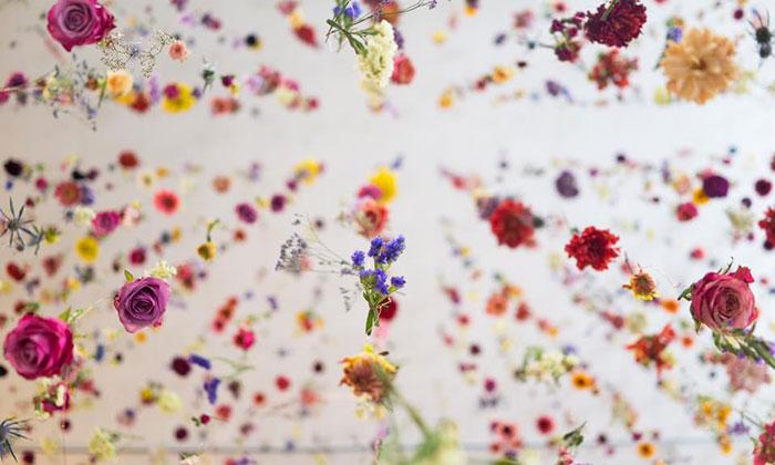 Rebecca Louise Law ozdobila galerii 8000 květinami