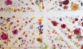 Rebecca Louise Law a jeji instalace The Beauty of Decay v Chandran Gallery