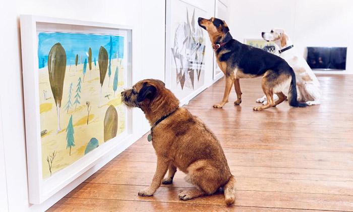 Play More jeprvní interaktivní výstava jen pro psy
