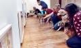 Pohled do expozice výstavy pro psy Play More