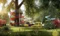 Sezení kolem stromu: Daria Nikalayenka