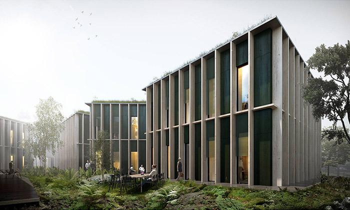 Lesy ČR budou mít dřevěné sídlo stvarem stromu