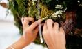 Instalace Hlas lesa od Bistro Agency pro Škoda Auto