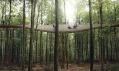 Rozhledna se stezkou v korunách stromů v Dánsku od EFFEKT