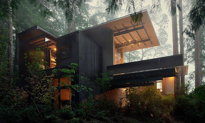 V lesích uLongbranchu vyrostl ze dřeva útulný dům