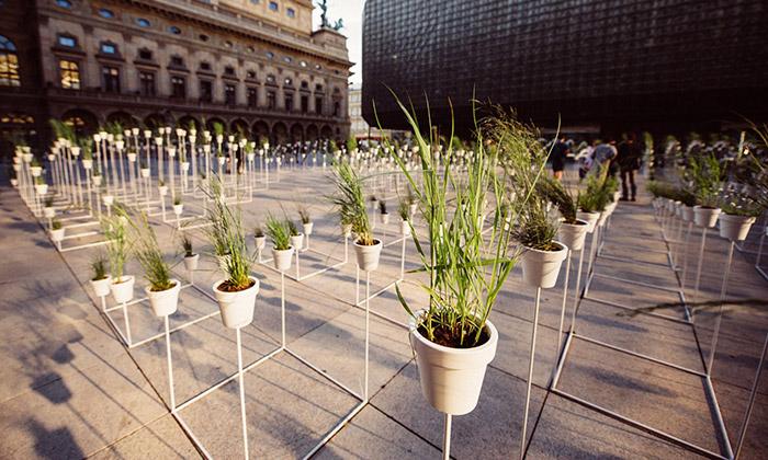 Piazzettu Národního divadla zdobí botanický labyrint