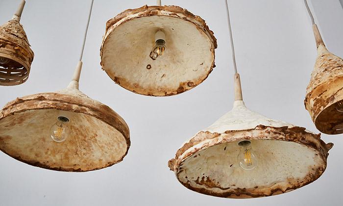 Britští designéři vyrábí svítidla anábytek zpodhoubí
