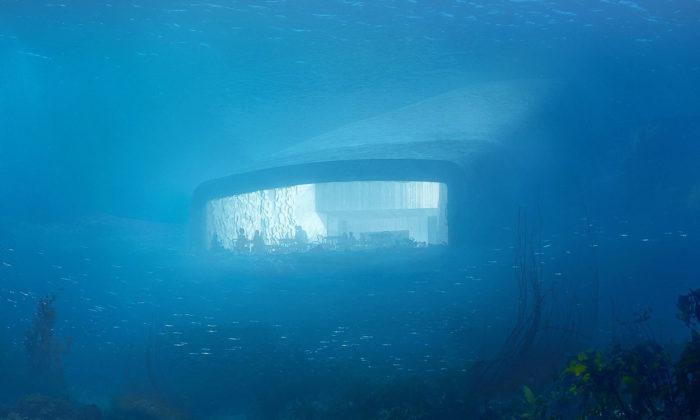 Snøhetta vNorsku postaví první evropskou podvodní restauraci Under