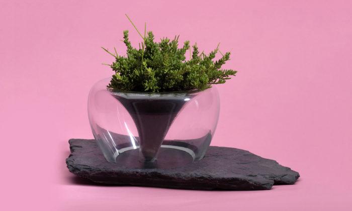 David Valner navrhl kolekci ručně foukaných skleněných květináčů Mi