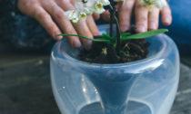David Valner a kolekce skleněných květináčů Mi