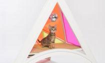 Přístřešky pro kočky vprojektu Architects for Animals