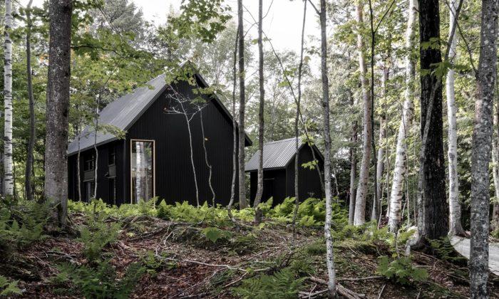 Chata vlesích vQuebecu dostala jednoduché tvary ačernou fasádu