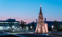 Charitativní vánoční stromy odHello Wood
