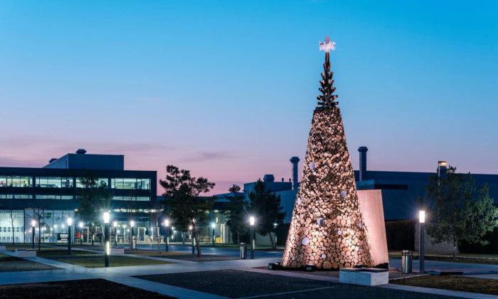 Hello Wood vyrobili charitativní dřevěné vánoční stromy pro Londýn aVídeň