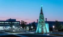 Charitativní vánoční stromy od Hello Wood