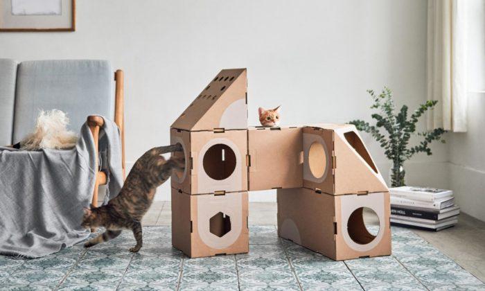 A Cat Thing jehravý modulární kartonový nábytek pro kočky