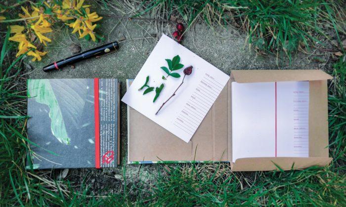 Český projekt Reformát vyrábí herbáře abatohy ze starého papíru