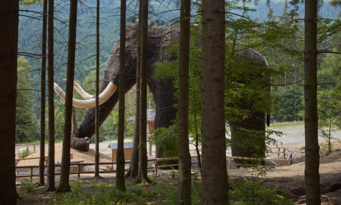 Na Dolní Moravě vyrostl obří Mamut fungující jako herní objekt
