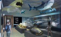 Nové expozice Národního muzea: Evoluce