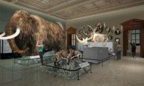 Nové expozice Národního muzea: Příroda