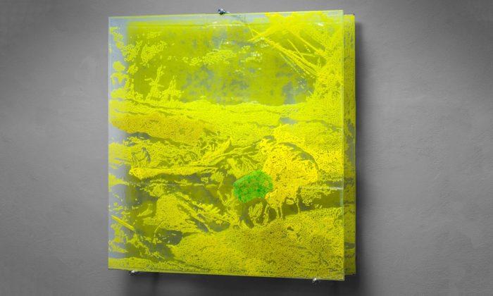 Dana Zámečníková vystavuje vPraze skleněné obrazy natéma Bouře