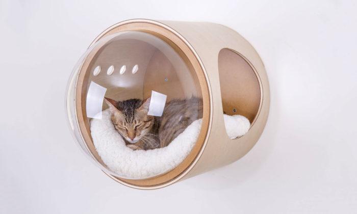 MyZoo Studio navrhuje domečky pro kočky vetvaru vesmírných lodí