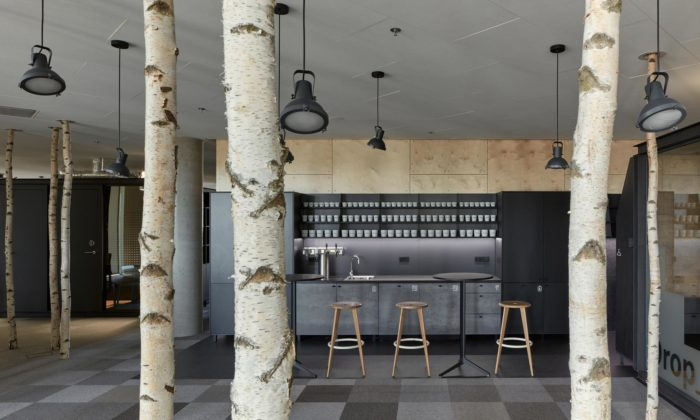 Pražské kanceláře Trask jsou vybaveny houpačkami azdobí jebřezový les