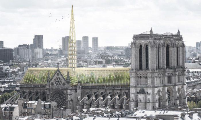 Pařížské studio NAB navrhuje postavit zelenou střechu nakatedrále Notre-Dame
