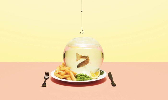 Londýn ukazuje velkou výstavou Jídlo budoucnost našeho stravování