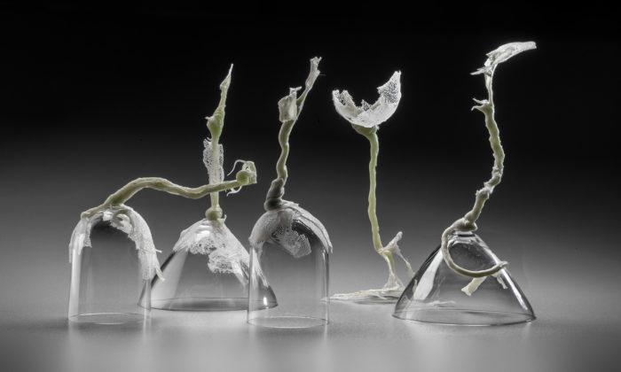 Zuzana Kubelková vystavuje unikátní objekty spojující sklo stextilním vláknem