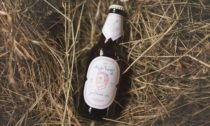 České pivo Morous sdesignem odagentury Little Greta