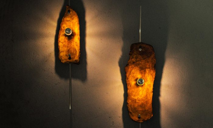 Mladý český designér našel alternativu vpodobě houby za neekologickou kůži