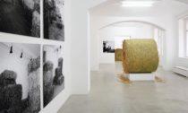 Ukázka z výstavy Zorka Ságlová: Seno-sláma 50