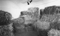 Zorka Ságlová: Seno-sláma v srpnu 1969
