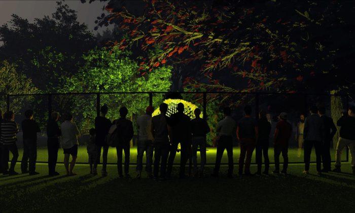 Eva Jiřičná adalších 17 výtvarníků navrhlo světelné instalace nafestival Signal