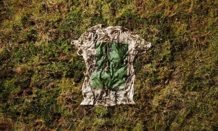 Vollebak začal vyrábět zcela biodegradovatelná trička zeukalyptu ařas
