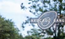 Restaurace Avocado Gang v Praze