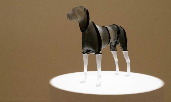 Mladá designérka Vendulka Prchalová tvoří surrealistické plastiky ze skla