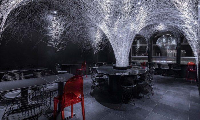Catanian navrhli interiér restaurace sgejzírem zrýžových nudlí