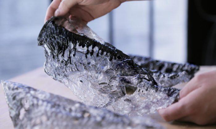 Sutherlin Santo navrhli 3D bio-tištěné filtry čistící vzduch odnečistot