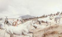 Martin Stranka a ukázka z výstavy Dechem v galerii Mánes