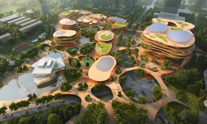Čína poskládá zteras ekologický multifunkční komplex sknihovnou igalerií