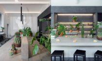 Kavárna a galerie Kafkův dům od ateliéru Objektor