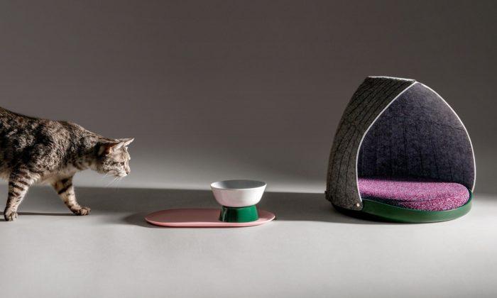 Layer navrhli značce Cat Person skládací pelíšek amisku pro kočky
