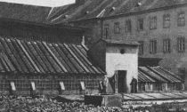 Původní Mendelův skleník ze 70. let