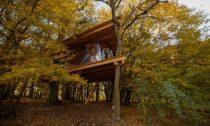 Jan Tyrpekl a jeho Tree House v Hrusicích