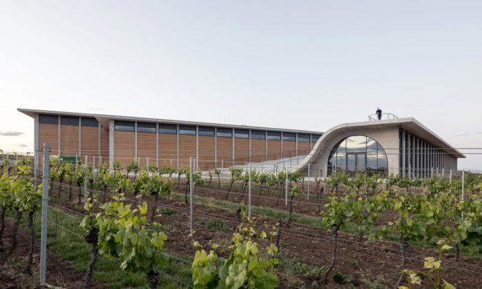 Na jihu Moravy seuprostřed vinic otevřelo vinařství Lahofer svyhlídkou nastřeše